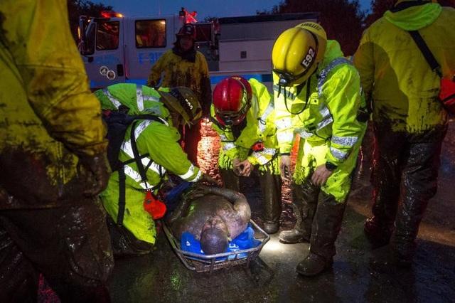 Ngoài 17 trường hợp thiệt mạng, ít nhất 25 người khác đã bị thương khi lũ bùn đổ bộ. Hàng chục cư dân khác đã may mắn được sơ tán tới nơi an toàn bằng máy bay.