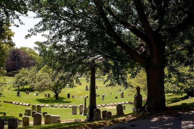 Vào những năm 1800, đây là một trong những địa điểm thăm quan nổi tiếng tại Mỹ. Gần đây, nghĩa trang dường như đã hết đất trống để nhận thêm các ngôi mộ mới. Vì vậy, những người quản lý dự tính sẽ thúc đẩy quảng bá nhằm thu hút khách du lịch tới đây nhiều hơn.