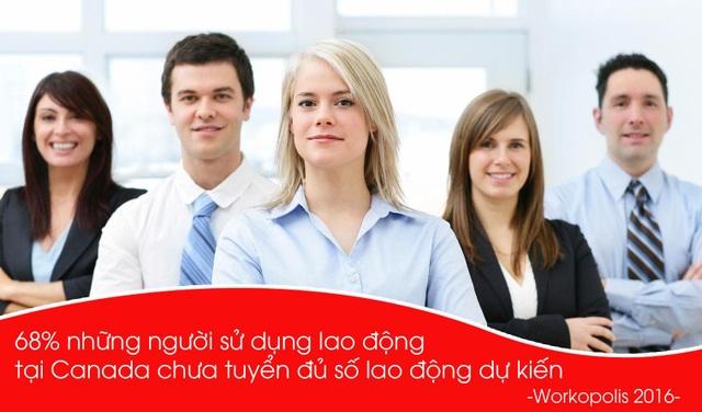 Cơ hội làm việc tại Canada dành cho du học sinh và người lao động Việt Nam - 1