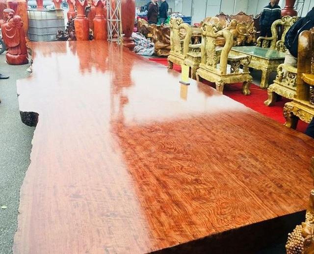 Với kích thước lớn, nhiều người cho rằng cây gỗ này có tuổi đời khá lâu và hiếm có.