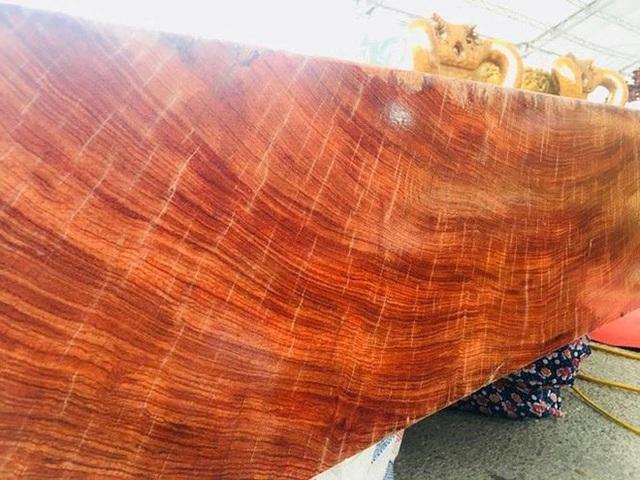 Thân gỗ có kích thước lên tới 2m.