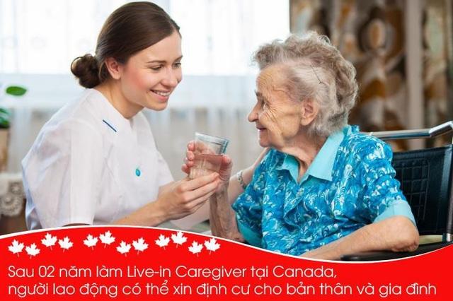 Cơ hội làm việc tại Canada dành cho du học sinh và người lao động Việt Nam - 8