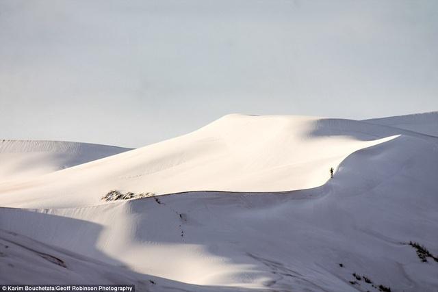 Những cồn cát được bao phủ bởi lớp tuyết dày tới 40 cm