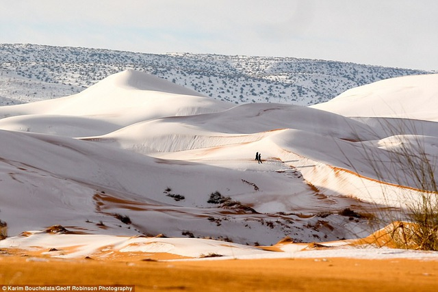 Đây là lần thứ 3 trong 37 năm qua, thị trấn nhỏ cửa ngõ vào sa mạc đón hiện tượng thiên nhiên kỳ thú này