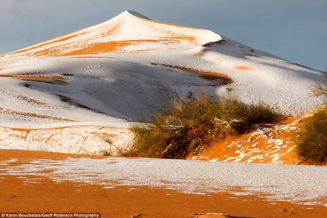 Tuyết phủ lẫn với cát