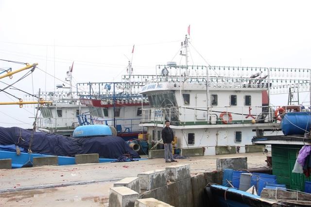 Đội tàu vỏ thép hiện đại của ngư dân Quảng Trị mới đưa vào khai thác