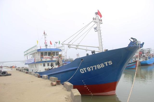 Ngư dân phấn khởi vươn khơi đánh bắt hải sản đầu năm - 5