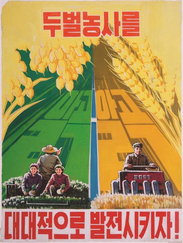 Áp phích được thiết kế để tuyên truyền hoạt động trồng trọt tại Triều Tiên (Ảnh: HongKongfp)