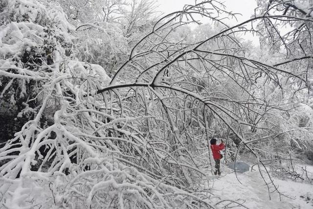 Theo Tân Hoa xã, Cơ quan Khí tượng Trung Quốc đã ban hành báo động cấp 2 về tình trạng tuyết rơi dày ở nhiều khu vực của nước này. (Ảnh: Reuters)
