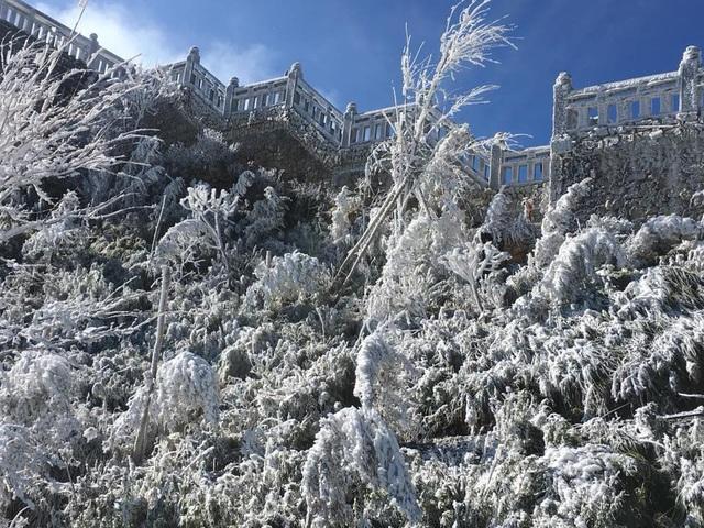 Mưa tuyết xuất hiện trên đỉnh núi Fansipan sáng ngày 19/12/2017. (Ảnh: Công ty dịch vụ cáp treo Fansipan Sa Pa)