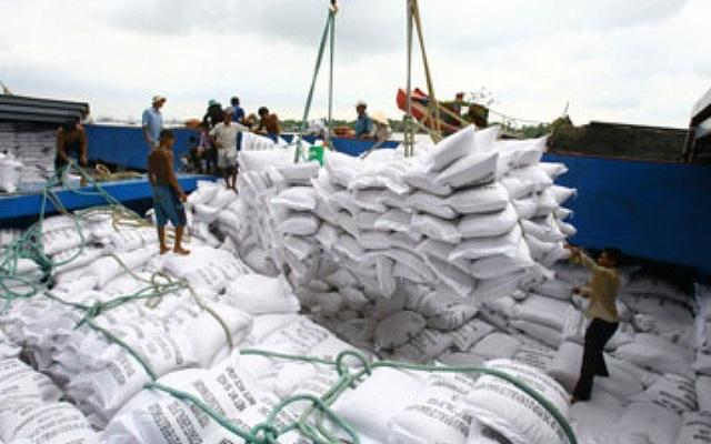 Lượng gạo tồn kho còn lớn. Ảnh: VTV