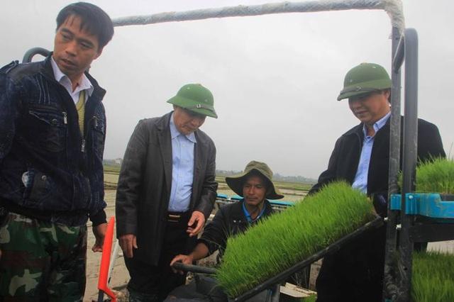 Quảng Trị áp dụng công nghệ mới, cơ giới hóa trong sản xuất nông nghiệp - 2