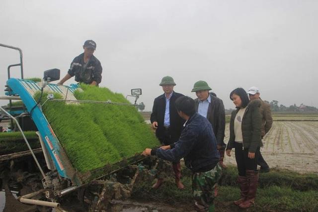 Quảng Trị áp dụng công nghệ mới, cơ giới hóa trong sản xuất nông nghiệp - 1