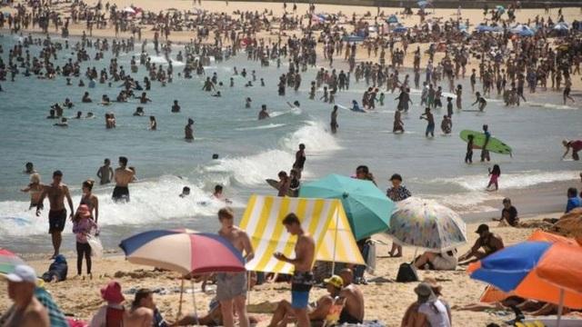 Australia nóng kỷ lục gần 50 độ C, nhựa đường tan chảy - 1