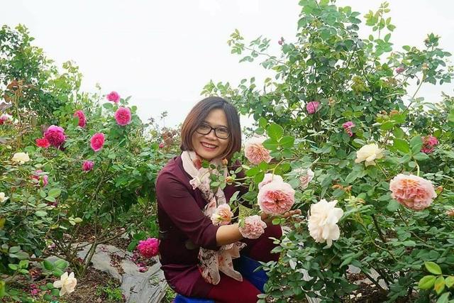 Những loại hoa nhập ngoại được ưa chuộng dịp Tết năm nay - 1
