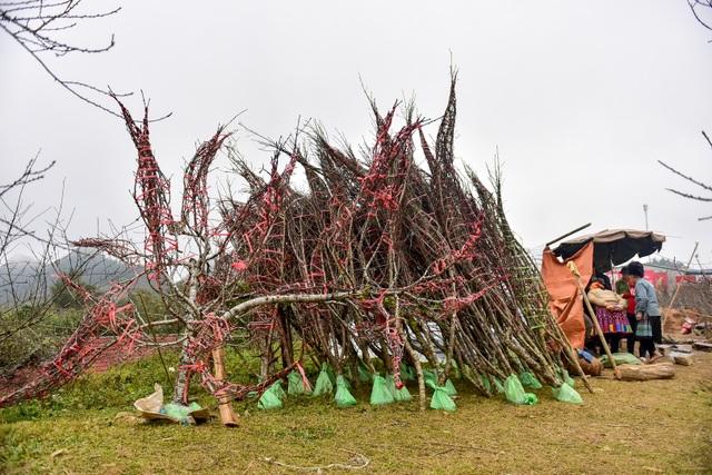 Đào rừng Sơn La bán tràn lan trên quốc lộ 6 chờ về Tết miền xuôi - 9