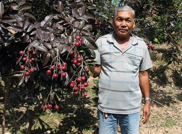 Lão nông từ chối khách Trung Quốc: Đặc sản độc đáo phải để dân Việt ăn Tết - 1
