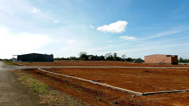 Ảnh những thửa đất nông nghiệp được phân lô bán nền trái phép ở TP. Pleiku (5).jpegN