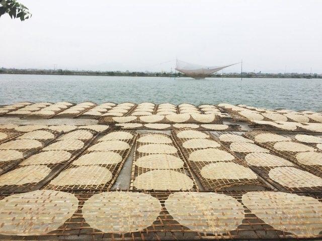 Làng bánh tráng bên sông Gianh hối hả vào vụ Tết - 7