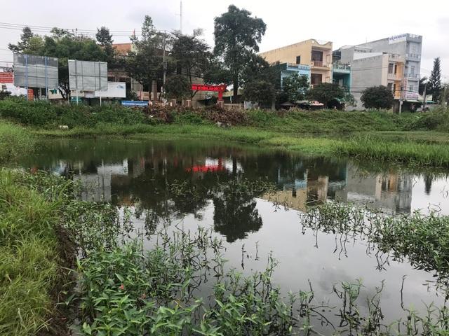 """Quảng Ngãi: Dự án trường đại học """"treo"""", 26.000 m2 đất thành... bãi sình lầy - 1"""
