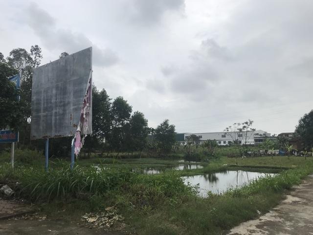 """Quảng Ngãi: Dự án trường đại học """"treo"""", 26.000 m2 đất thành... bãi sình lầy - 3"""