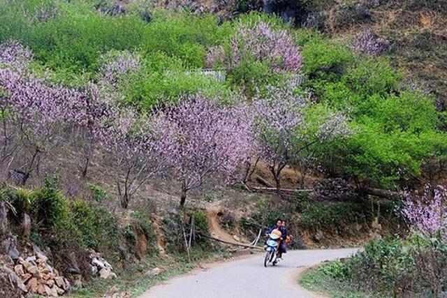 Top những điểm du lịch hấp dẫn nhất Việt Nam dịp Tết Nguyên đán 2019 - 4