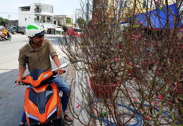 Nha Trang: Sắc xuân ngập tràn phố biển, du khách háo hức dạo phố - 4