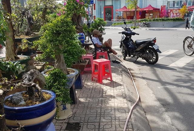Nha Trang: Sắc xuân ngập tràn phố biển, du khách háo hức dạo phố - 7