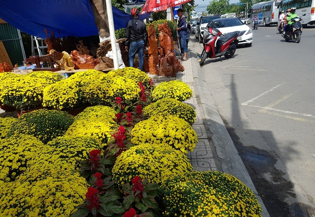 Nha Trang: Sắc xuân ngập tràn phố biển, du khách háo hức dạo phố - 1
