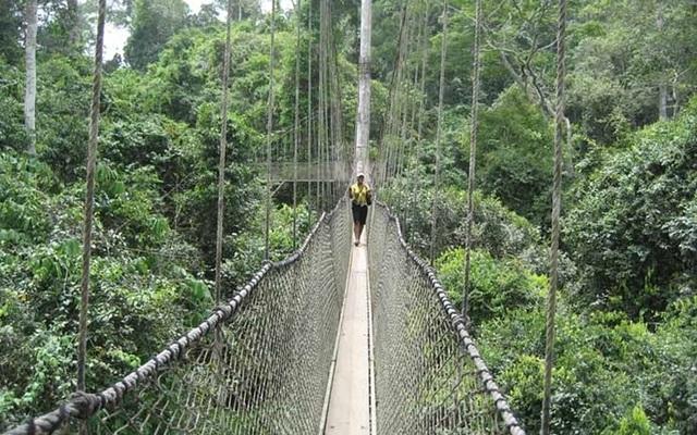 """Những """"cây cầu đáng sợ nhất"""" thế giới, trong đó có cầu khỉ Việt Nam  - 9"""