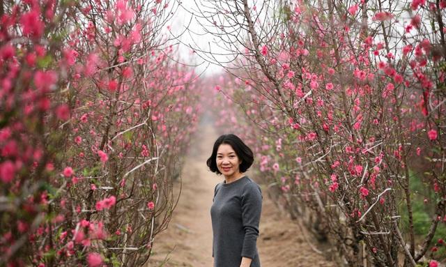 Vườn đào Nhật Tân đỏ rực những ngày giáp Tết - 9