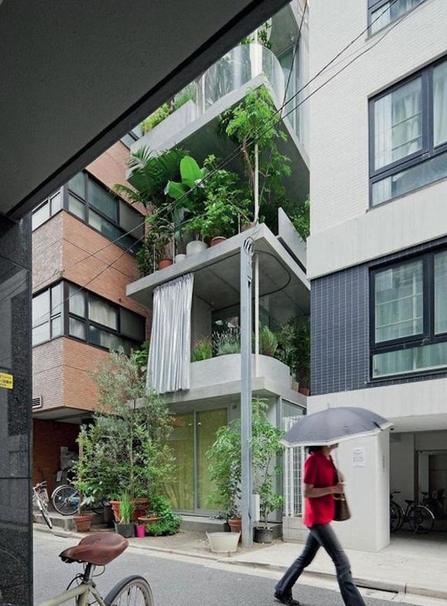 Những căn nhà siêu dị nhưng vẫn đẹp rụng rời nhìn là biết chỉ có thể là Nhật Bản - 18..jpg
