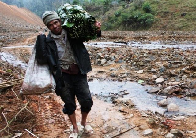 Thanh Hoá: Kiếm tiền triệu từ lá dong rừng - 2