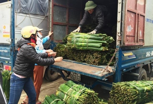 Thanh Hoá: Kiếm tiền triệu từ lá dong rừng - 7
