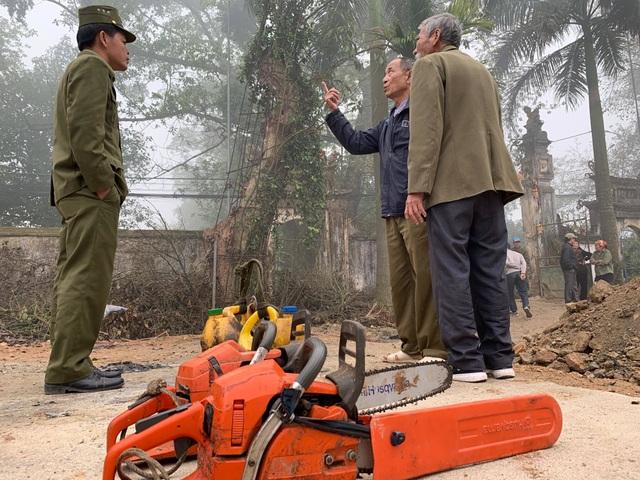 Hà Nội: Chặt hạ cây sưa đỏ 100 năm tuổi bên cạnh cây sưa trăm tỷ - 2
