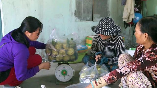 Giáp Tết, nông dân thu hàng trăm triệu đồng từ trái mãng cầu ta trái vụ - 4