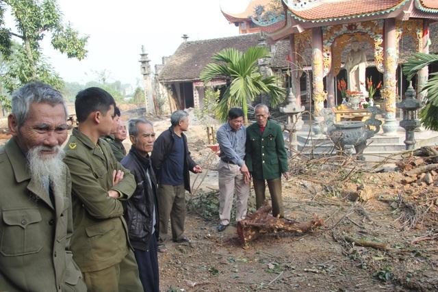 Cận cảnh buổi chặt hạ cây sưa trăm tỷ ở Hà Nội - 7