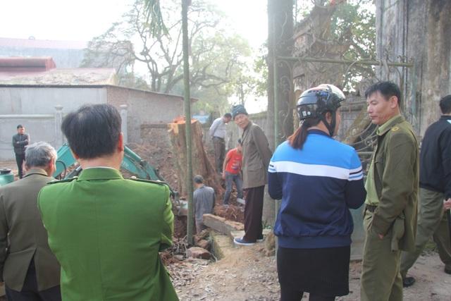 Cận cảnh buổi chặt hạ cây sưa trăm tỷ ở Hà Nội - 8