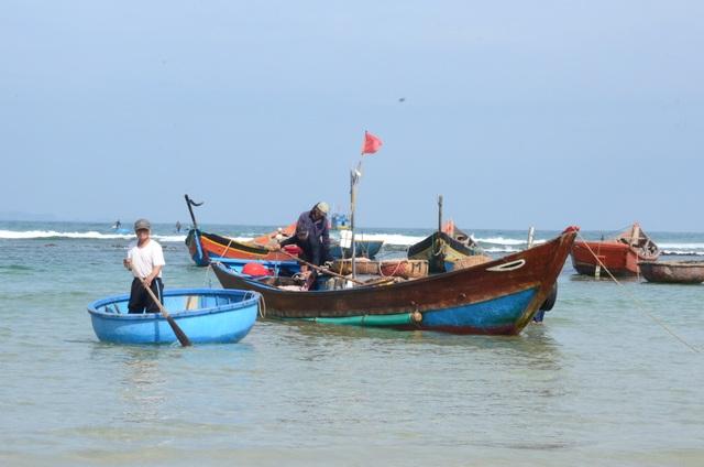 Cận Tết, ngư dân Quảng Ngãi trúng đậm lộc biển - 1