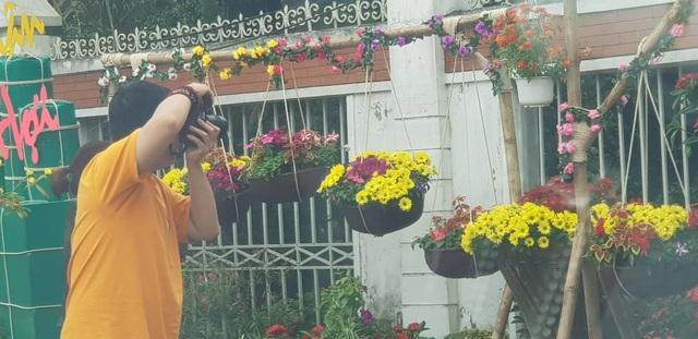 Con đường hoa xuân độc đáo Thành Vinh - 11