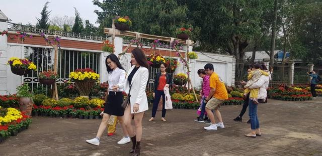 Con đường hoa xuân độc đáo Thành Vinh - 4