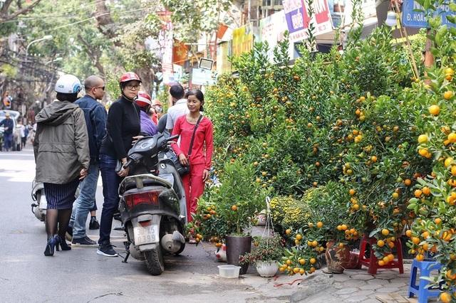 Ngàn hoa khoe sắc đón Xuân tại con đường hoa lớn nhất Hà Nội - 2