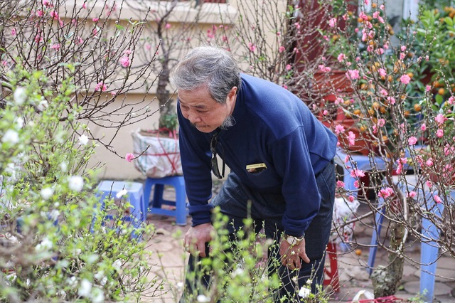 Ngàn hoa khoe sắc đón Xuân tại con đường hoa lớn nhất Hà Nội - 6
