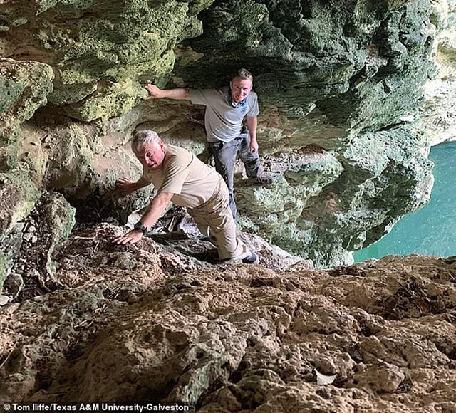 Phát hiện loài giáp xác trong hang động hoàn toàn mới  - 2