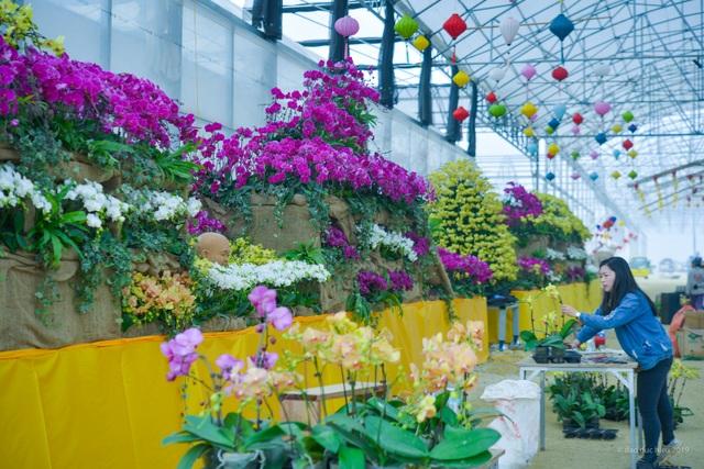 Hàng trăm loại hoa khoe sắc tại lễ hội Xuân Bái Đính - 6