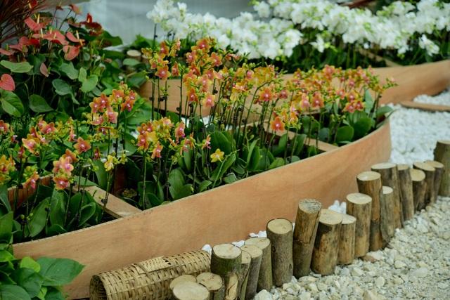 Hàng trăm loại hoa khoe sắc tại lễ hội Xuân Bái Đính - 4