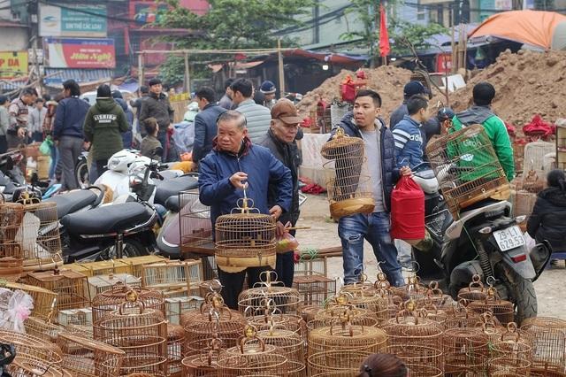 Khám phá chợ chim độc đáo, lớn nhất Hà Nội ngày cuối năm - 2