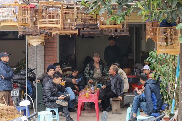 Khám phá chợ chim độc đáo, lớn nhất Hà Nội ngày cuối năm - 7