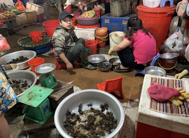 Bất ngờ cơn sốt cua đồng sát Tết:Chị em Hà thành lùng mua khắp chợ - 2