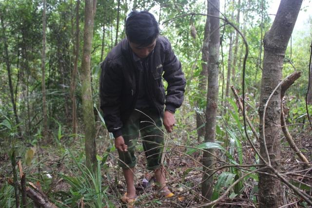 Xuân về, theo chân người dân bản địa săn chuột rừng - 2